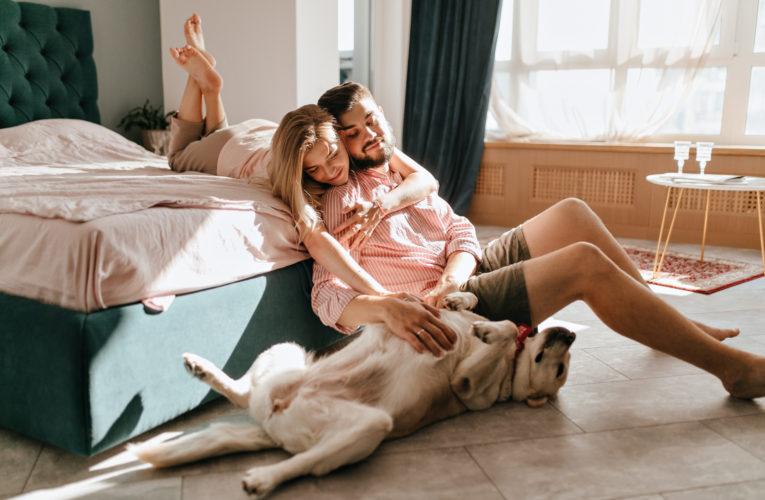 Karanténní život se psem. Jak na to?